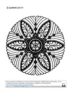 symmetrical design, 6 petalled flower in center surrounded by 6 larger leaves